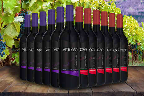 Fenix Deals SL - 12 Bottles of Premium Virtuoso Red Wine Cabernet Sauvignon & Syrah - Save 58%
