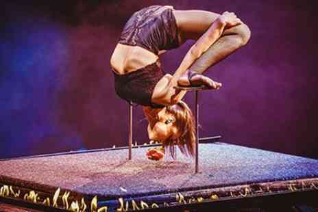 The European Events Corporation - One general admission Grandstand ticket for Circus Extreme - Save 52%