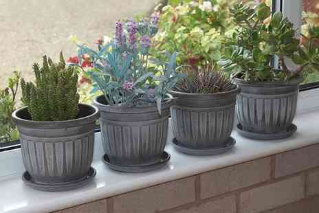 Groupon Goods Global GmbH - Pack of Four Georgian Style Mini Planters - Save 0%
