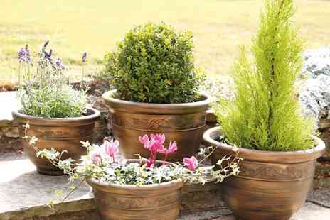 Groupon Goods Global GmbH - Pack of Four Antique Style Planters - Save 33%