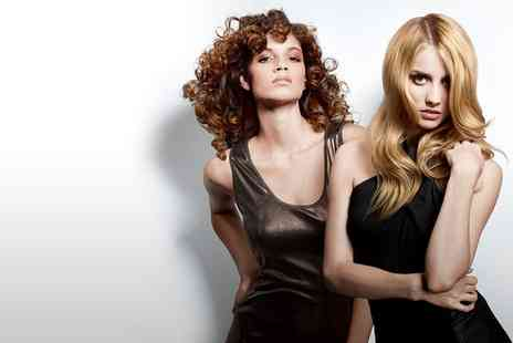 Artizan Professional Hair & Beauty - Restyle and Finish with Blow Dry - Save 82%