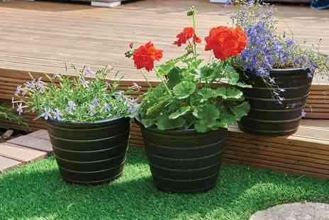 Groupon Goods Global GmbH - Pack of Three Olympia Planters - Save 42%