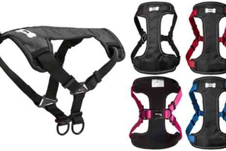 Groupon Goods Global GmbH - Bunty Strap N Strole Harness - Save 50%