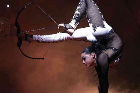 Tony Hopkins Entertainment - Ticket to the Netherlands National Circus choose from Warwick and Wakefield locations - Save 63%