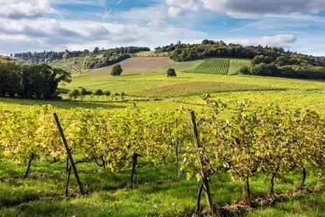 Denbies Wine Estate - Vineyard train tour with bubbly for 2 - Save 57%