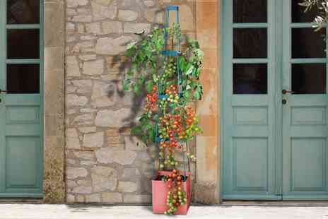 Groupon Goods Global GmbH - Self Watering Plant Growing Tower - Save 51%