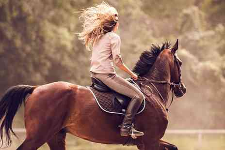 Fox Hills Farm and Riding Centre - Horse Riding Lesson or Stable Management Experience for One or Two - Save 36%