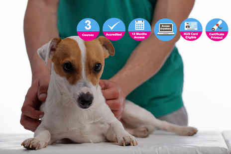 Oplex Careers - Accredited level 2, 3 or 4 animal care course - Save 93%