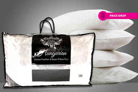Direct Warehouse - Four Hungarian goose feather and down pillows - Save 84%