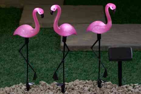 Groupon Goods Global GmbH - One, Two or Four Sets of Three Flamingo Solar Standing Lights - Save 63%