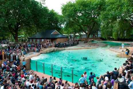 Superbreak - One to Three Nights Stay for Up to Four with Breakfast and Zoo Entry - Save 0%