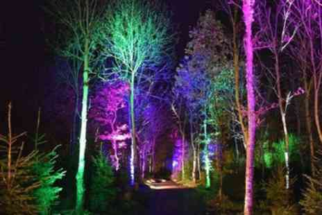 Mystical Gardens - One adult or one family ticket to see Mystical Gardens Light Show on 23 To 25 February - Save 0%