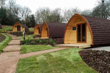 Whitemead Forest Park - One, Two or Three Night Luxury Glamping Pod Stay for Four - Save 0%