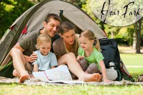 Hoar Park - One Night Family Camping and Fishing Trip - Save 61%