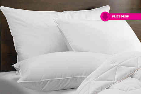 Home Furnishings Company - Pack of four goose feather and down pillows - Save 86%
