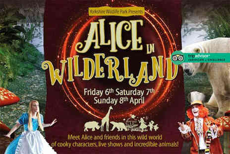 Yorkshire Wildlife Park - Two tickets to Alice in Wilderland 2018 Easter event head over on 6th, 7th or 8th April - Save 50%