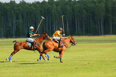 Robin Hood Polo Club - Two hour group polo lesson for one or two - Save 75%
