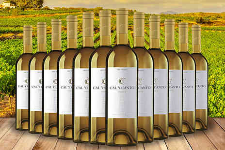 Fenix Deals SL - 12 Bottles of Award Winning Cal Y Canto Castilla White Wine - Save 49%