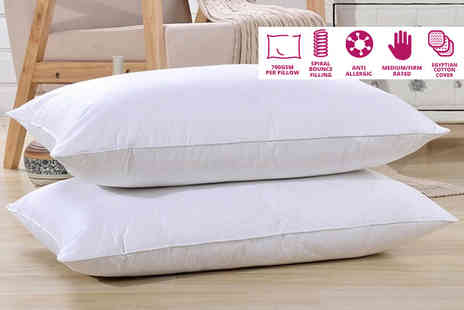 Groundlevel - Pair of Egyptian cotton spiral bounce pillows - Save 68%