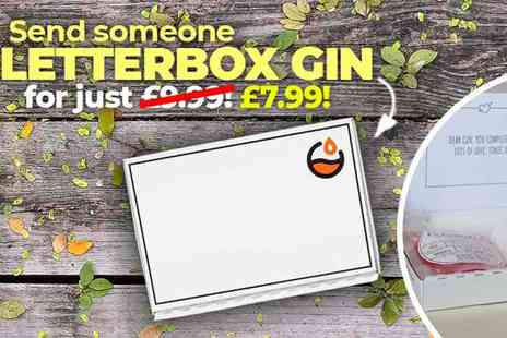 Flavourly.com - Letterbox Gin from Flavourly, An Innovative & Personalised Gift Plus Free delivery - Save 20%