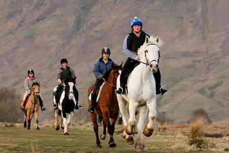 Milndavie Farm - Two hour horse riding hack or two one hour horse riding lessons for one - Save 40%