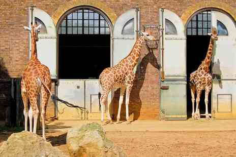 Super Break - One or two night London stay for two with breakfast and one day entrance to ZSL London Zoo - Save 0%