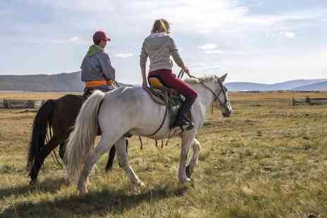 Grange Trekking - Two hour pony riding lesson and trek for one or two - Save 60%