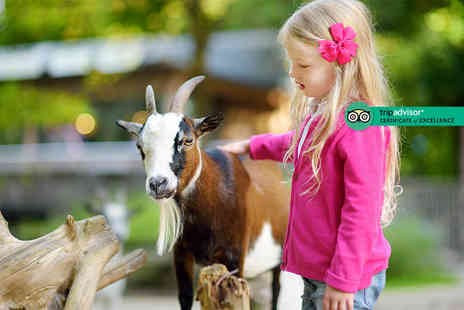 Animal Quackers Farm - Entry for two adults and two children to Quackers Petting Farm - Save 44%