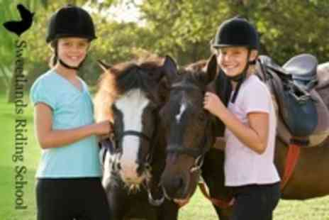 Sweetlands Riding School - Pony Party For Four Children With One Hour Hack - Save 50%