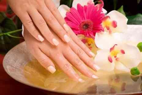Shades Hair and Beauty - Shellac Manicure or Pedicure or Both - Save 0%