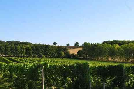 Buyagift - Vineyard tour and wine tasting with two course lunch for two - Save 0%