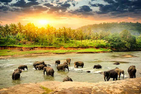 Sri Lanka Express Tour - Sri Lanka Express Tour with Optional Extension - Save 0%