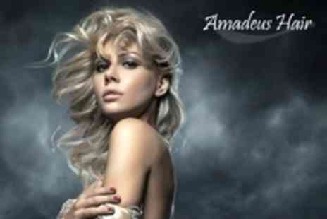 Amadeus Hair - Cut and Finish With Conditioning Treatment - Save 59%