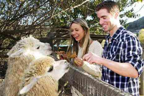 The Llama Park - Entry to The Llama Park for one adult and one child, or entry for two adults and two children - Save 60%