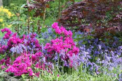 Green Island Gardens - Two tickets to Bluebells Bazaar & NGS Open Day on May 5th and 6th - Save 40%