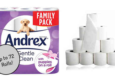 Global Merchant Support - Packs of Andrex 2 Ply Toilet Roll  24, 48 or 72 - Save 56%