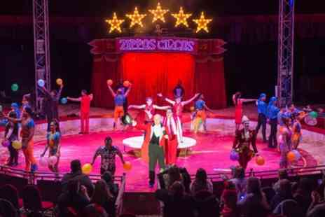 Zippos Circus - Ticket to Zippos Circus on 4 to 29 May - Save 50%