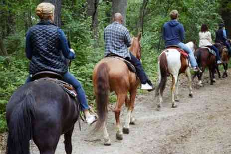 Milndavie Farm - Two Hour Horse Riding Experience for One or Two - Save 40%