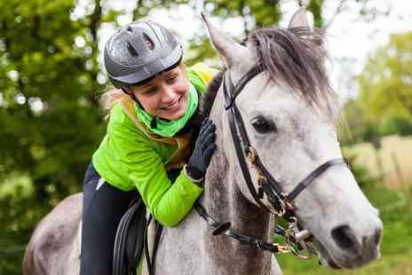 Mackenzies Equestrian Centre - One hour horse riding lesson - Save 0%