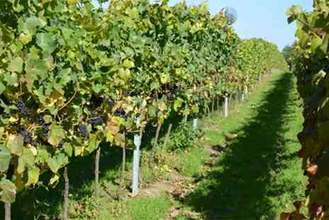Court Garden - Sparkling wine vineyard tour for two or four - Save 28%