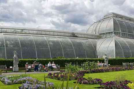 Kew Gardens - Entry to The Royal Botanical Gardens - Save 20%