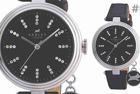 Brand Logic Europe - Ladies Radley Watch Choose 8 Designs - Save 67%