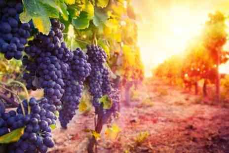 Redhill Farm Estate Wine Bar - Vineyard Tour with Tasting Experience for Up to Six - Save 50%