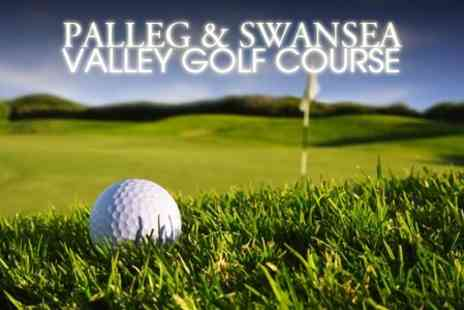 Palleg and Swansea Valley Golf Course - Day of Golf Plus Lunch - Save 58%