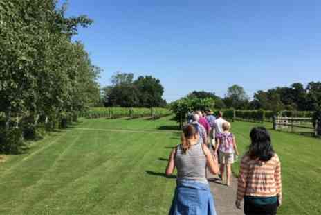 Shawsgate Vineyard - Shawsgate Vineyard Tour and Tasting for Two - Save 40%