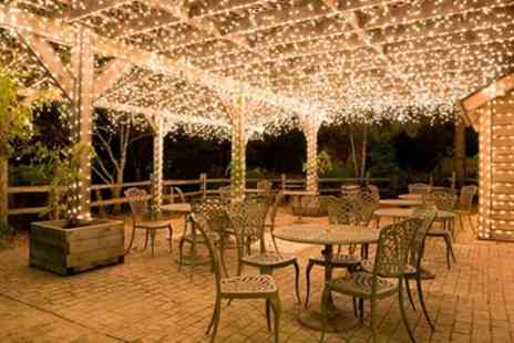 Groupon Goods Global GmbH - One, Two, Three or Four Strings of 50, 100 or 200 Led Solar Powered Fairy Lights - Save 67%