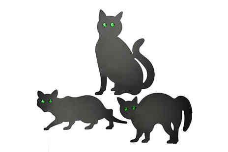 Home Season - Black Scare Cats Animal Control Choose 3 Pack - Save 75%