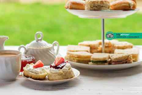 Southwell Garden Centre - Afternoon tea for two - Save 0%