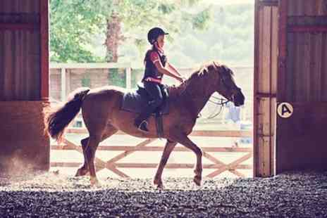 Shedfield Riding School - 30 Minute Private Horse Riding Lesson - Save 35%