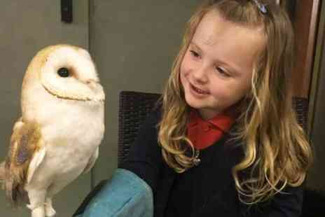 The Animal Ark Travelling Zoo - 30 minute meet and greet owl experience for two - Save 53%